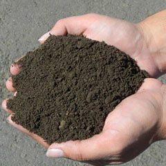 top soils